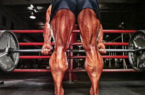 Ноги вид сздади