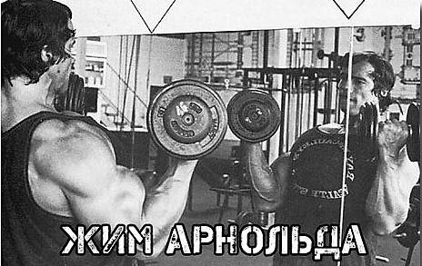 Жим Арнольда