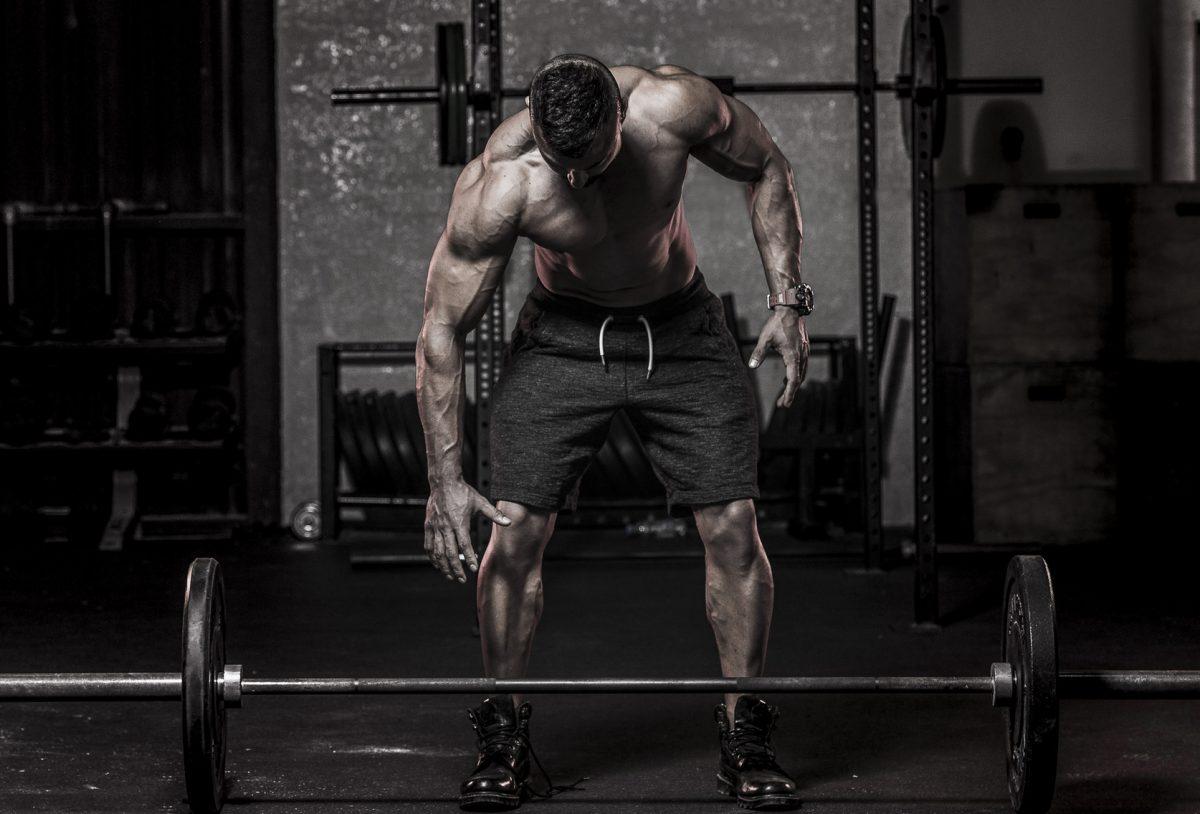 Силовая тренировка для начинающих